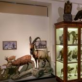 Georgia_NationalMuseum_031